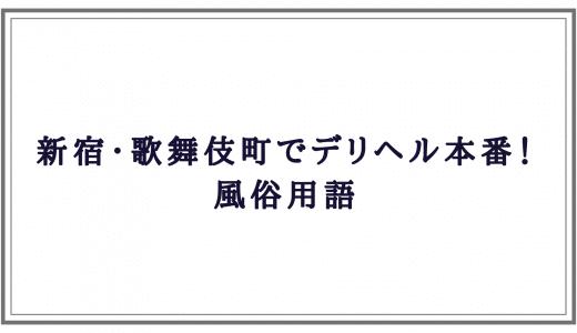 新宿・歌舞伎町デリヘル本番! 風俗用語